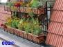 Geländer- Blumenkasten