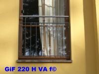 GiF 220 H VA f
