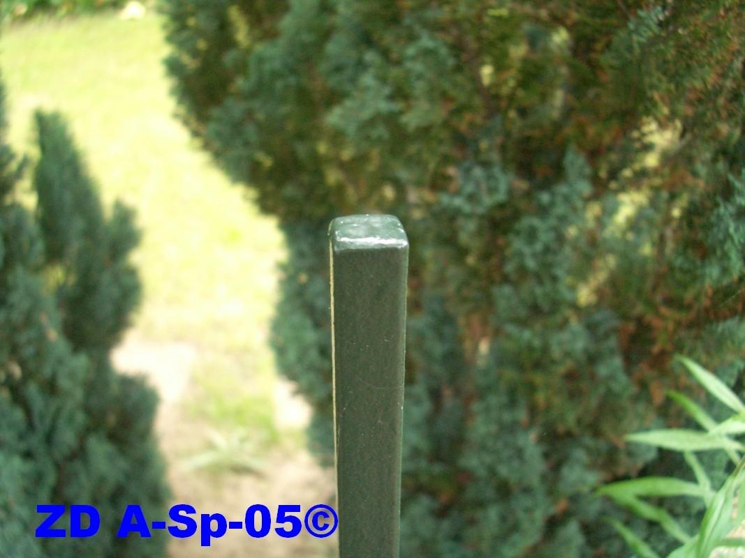 ZD A-Sp-05